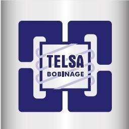 Logo TELSA Validé